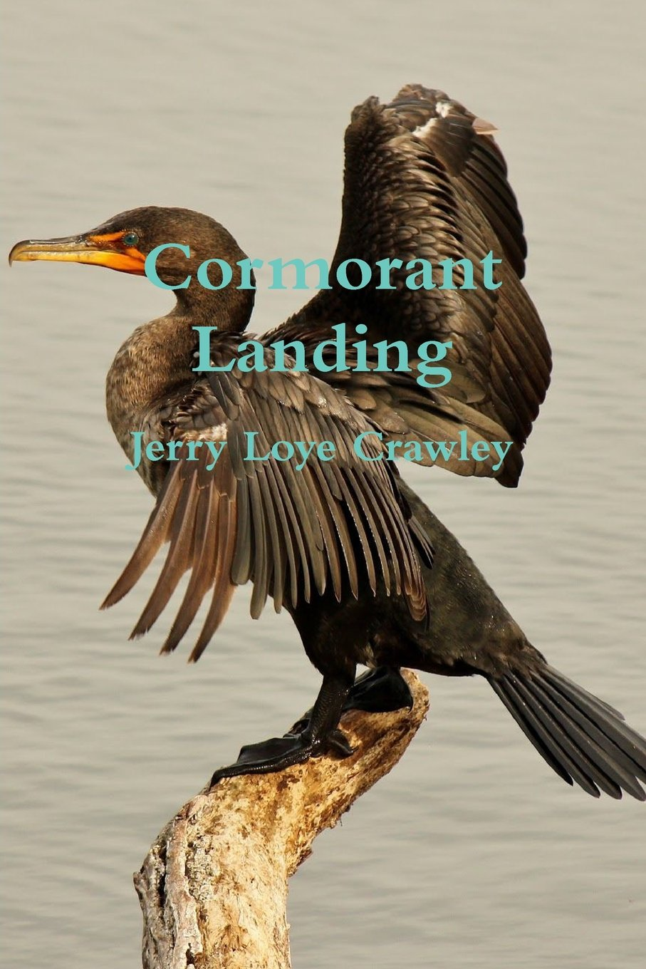 Download Cormorant Landing pdf