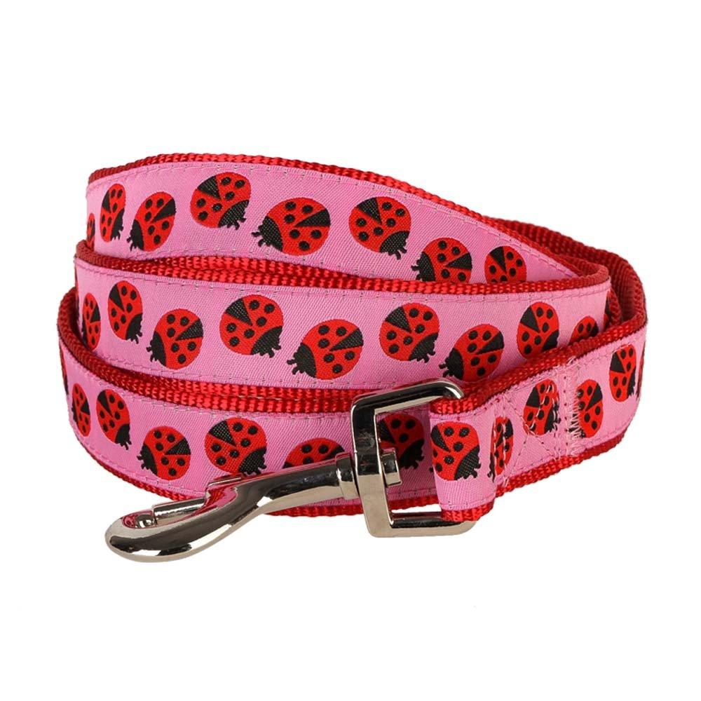 Ladybug Leash 5'  3 4\ Ladybug Leash 5'  3 4\ blueeberry Pet Size M 3 4-inch by 5-Foot Pink Webbing Ladybug Designer Basic Nylon Dog Leash, Medium