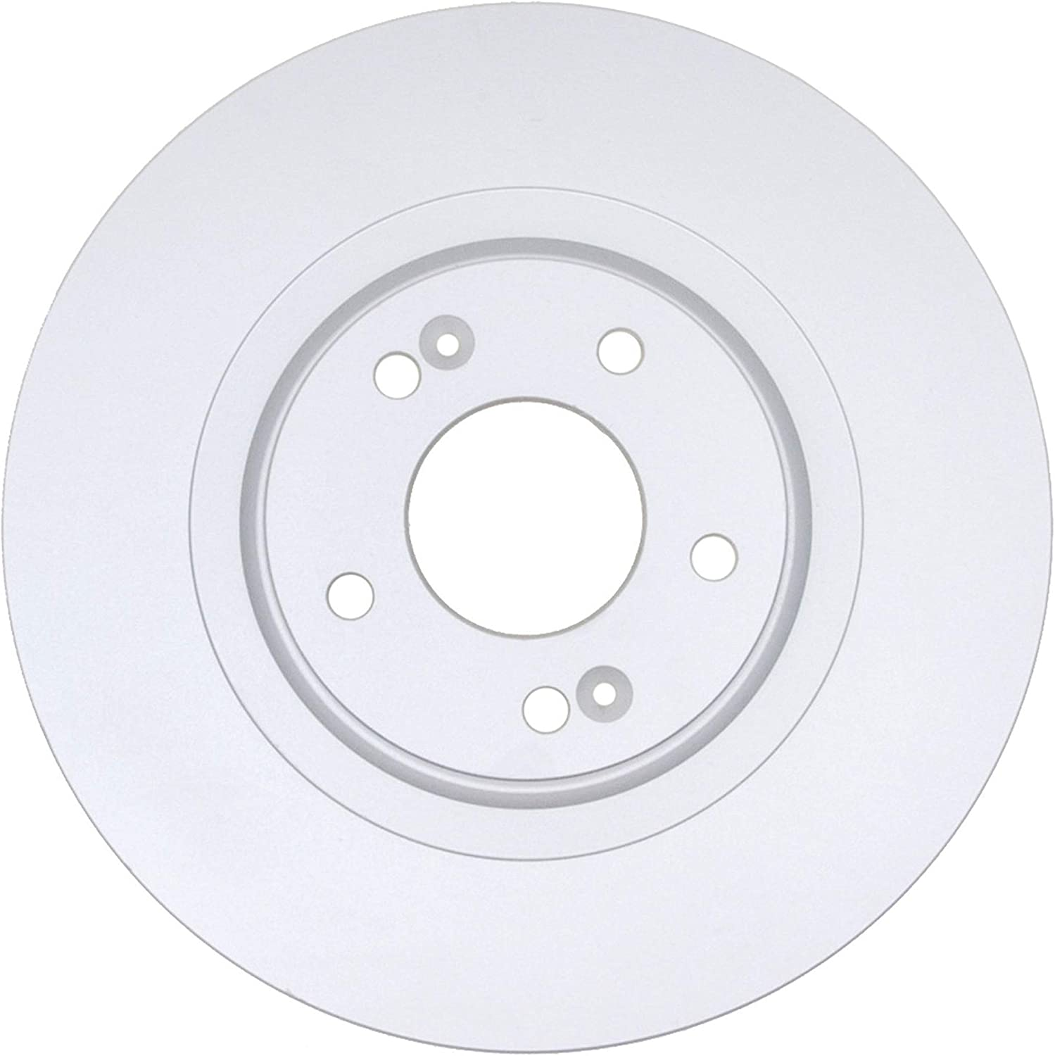 Raybestos 981010FZN Rust Prevention Technology Coated Rotor Brake Rotor 1 Pack