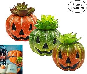 JIUCHEN Set of 3 Artificial Succulent Plants in Pumpkin Pots, Assorted Green Decorative Fake Faux Succulent for Halloween Home Office Decor