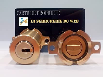 Fichet – Juego de cilindro adaptable Kaba para cerradura Fichet 787 – 6 llaves