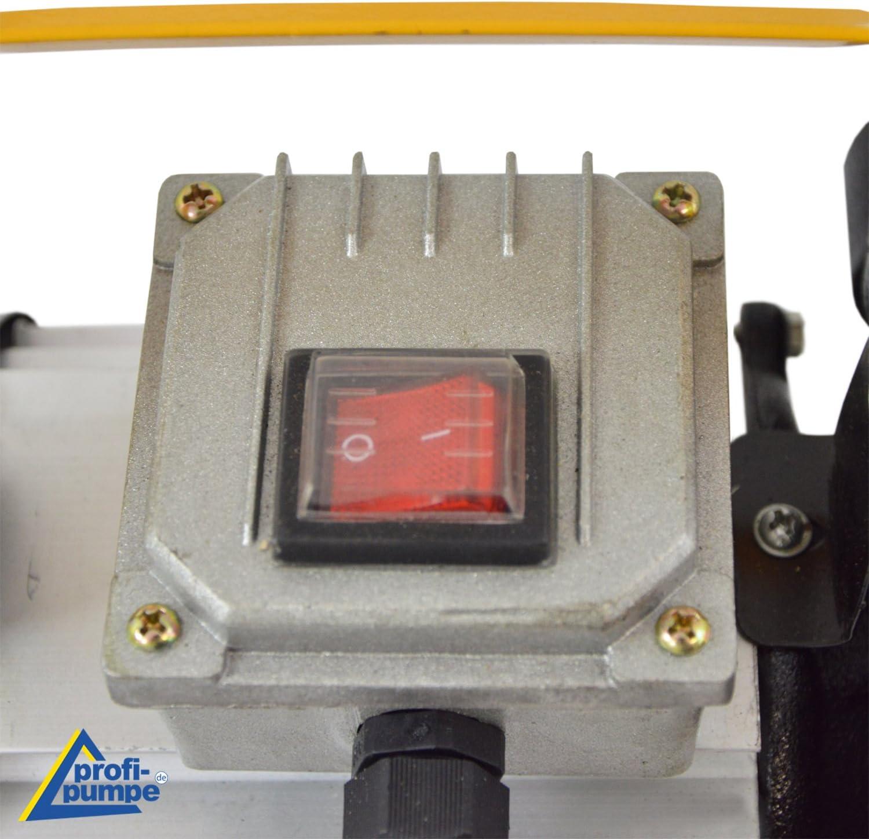 Standard 4 elettrici Pompa per diesel pompa per olio combustibile autoaspirante 230V set completo pompa con pistola automatica e tubo in gomma
