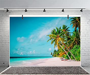 Amazon com : Leyiyi 10x6 5ft Photography Background Seaside Backdrop