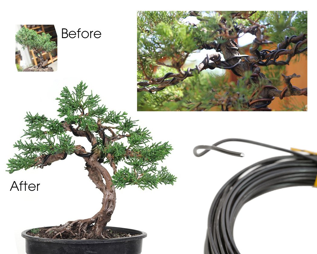 Black 1.0 mm // 1.5 mm // 2.0 mm, 10m for each size Ace Select 3 Pieces 10m Bonsai Wire Craft Aluminium Wire Bonsai Training Tools
