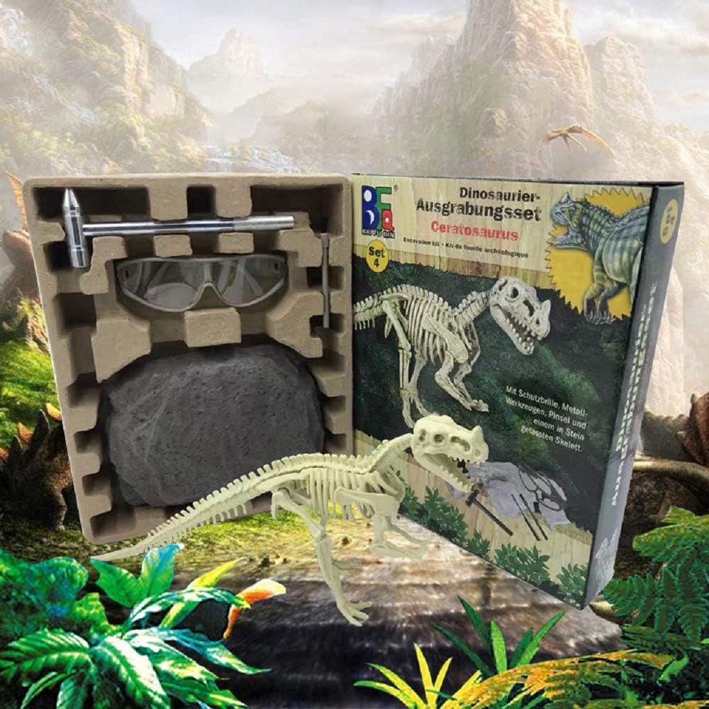 Creuser et d/écouvrir Fossile Dinosaure Jeu de Dinausore Petite Arch/éologue Jeu Kit dexcavation Dinosaure Squelette 3D Dino Fossil Bones Kit de Science de lexcavation Jouet /éducatif Cadeau 1 Set
