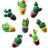 8 PCS Assorted Styles Succulent Cactus Shape Fridge Refrigerator Decor Magnets Sticker Home Decoration Children Education Toys
