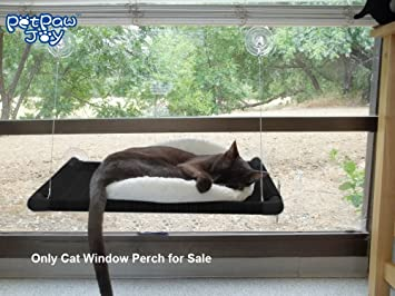 cat window perch holding 2 cats weighted up to 50lb upgrading suction cups cat hammock window amazon     cat window perch holding 2 cats weighted up to 50lb      rh   amazon