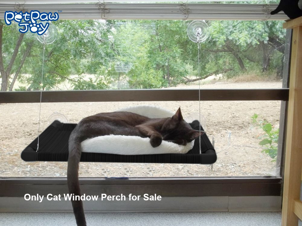 Cat Window Perch Holding 2 cats weighted up to 50lb Upgrading Suction Cups