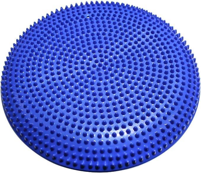 Easy Training Disco de inestabilidad, inflador Incluido: Amazon.es ...