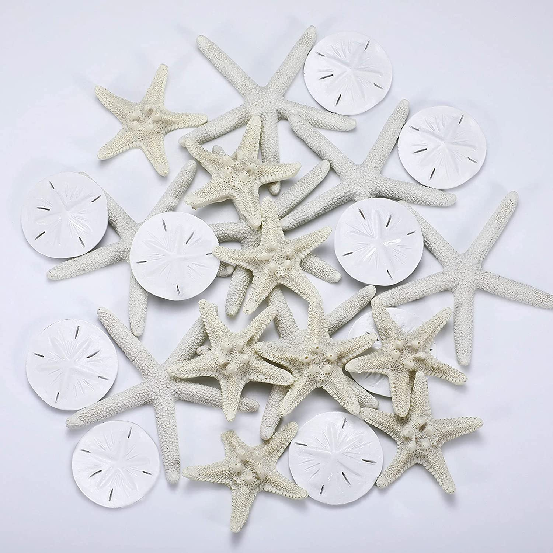 Jetec 24 Pieces Resin Starfish Assorted Sand Dollar Ornament Starfish Ornaments Starfish for Crafts White Starfish Wall Decor Beach Starfish Decor for Wedding Party Decor DIY Craft Supplies
