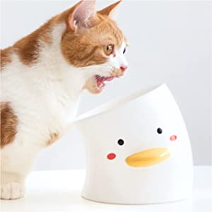 ORANGESCE Original Design Whisker Fatigue Cat Bowl,Raised Cat Food Bowls,18°Tilted Elevated Feeding Bowls,Ceramic Pet Food Bowls for Cats and Small Dogs,Microwave & Dishwasher Safe