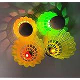 LED Badminton, Inngree 6Pack Shuttlecock Dark Night Goose Feather Glow Birdies Lighting For Outdoor Indoor Sports Activities