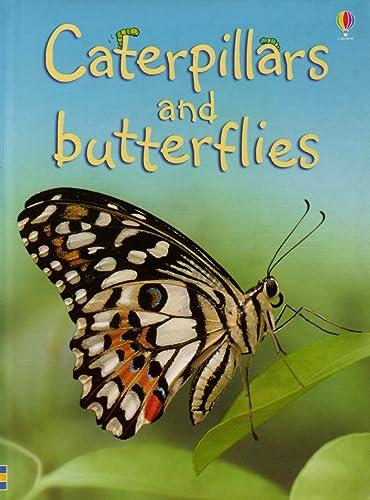 Caterpillars and Butterflies (Beginners) (Beginners Series)