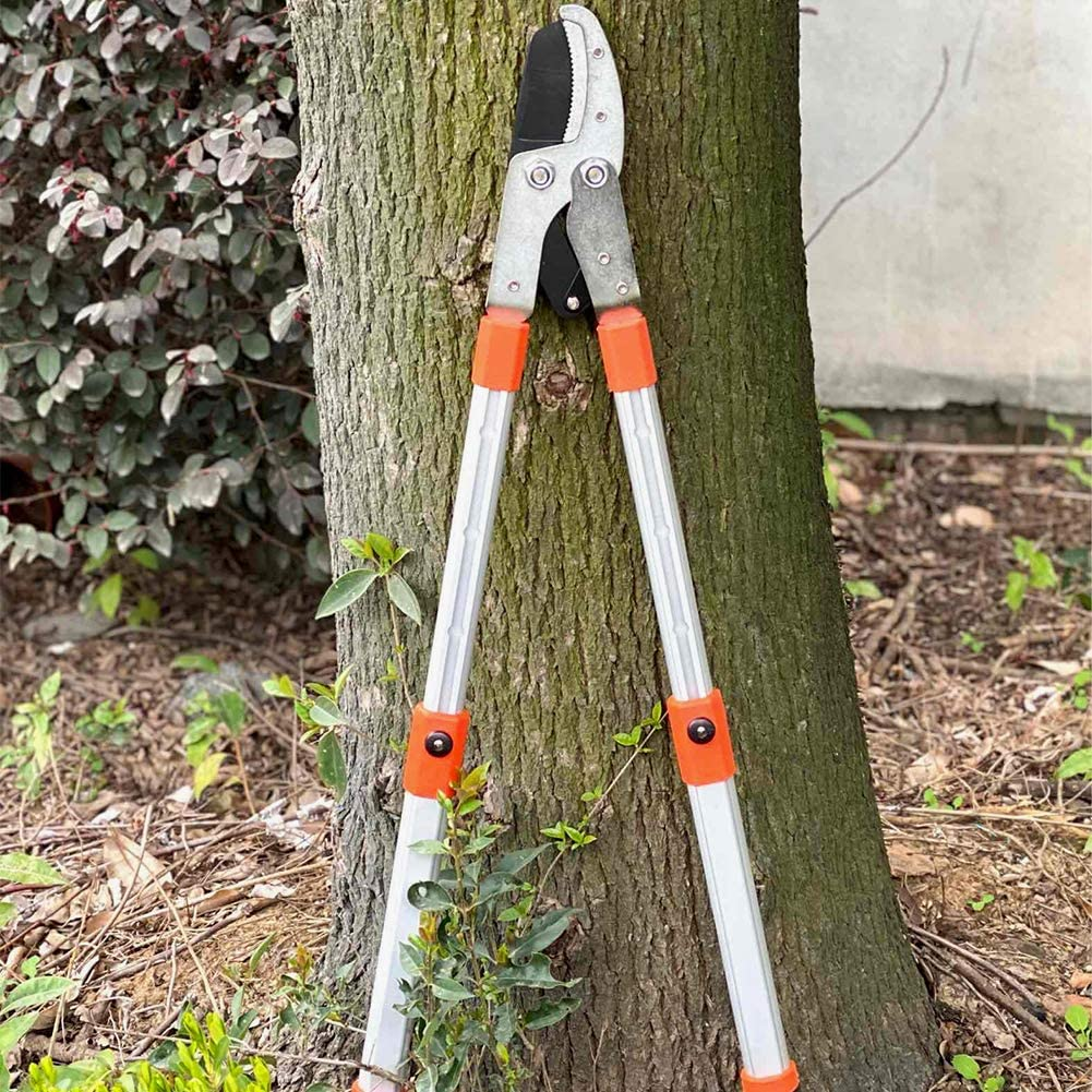 and Tall Bushes HORTICAN Telescopic Shears with Wavy Blade and Extendable Steel Handles Boxwood Extendable Manual Hedge Clippers for Trimming Borders