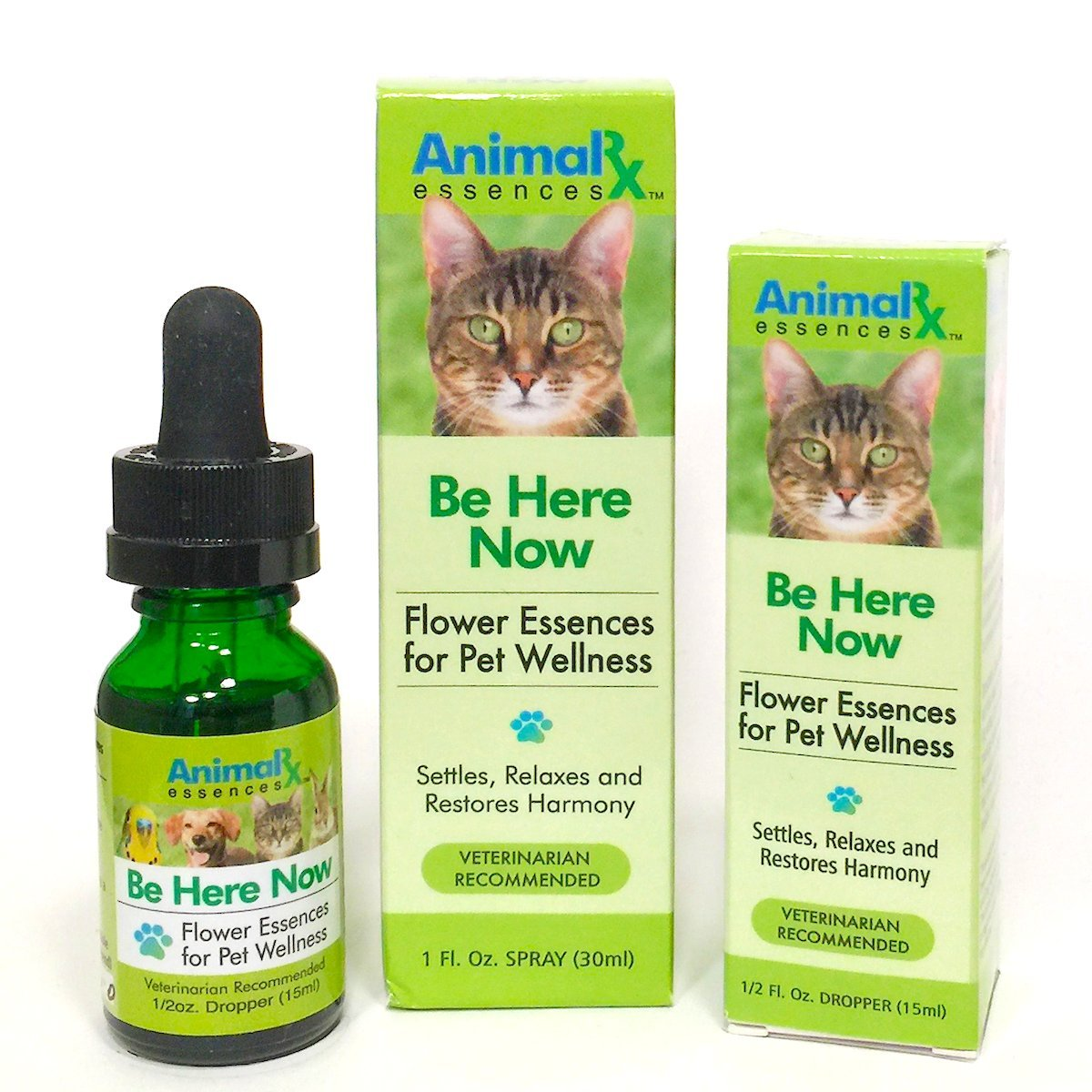 Be Here Now Flower Essences for Companion Animals