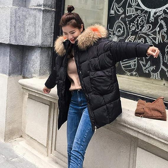 Amazon.com: DICPOLIA Women Thicken Warm Winter Jackets Coat Hood Parka Overcoat Long Jacket Outwear: Clothing