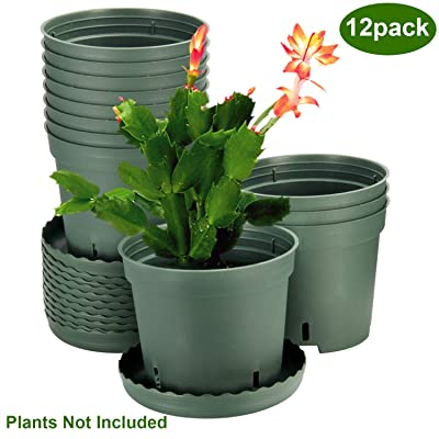 Plastic Pots for Plants, ZOUTOG 6 inch Plastic Planters with Drainage Hole, Pack of 12 - Plants not Included: Garden & Outdoor