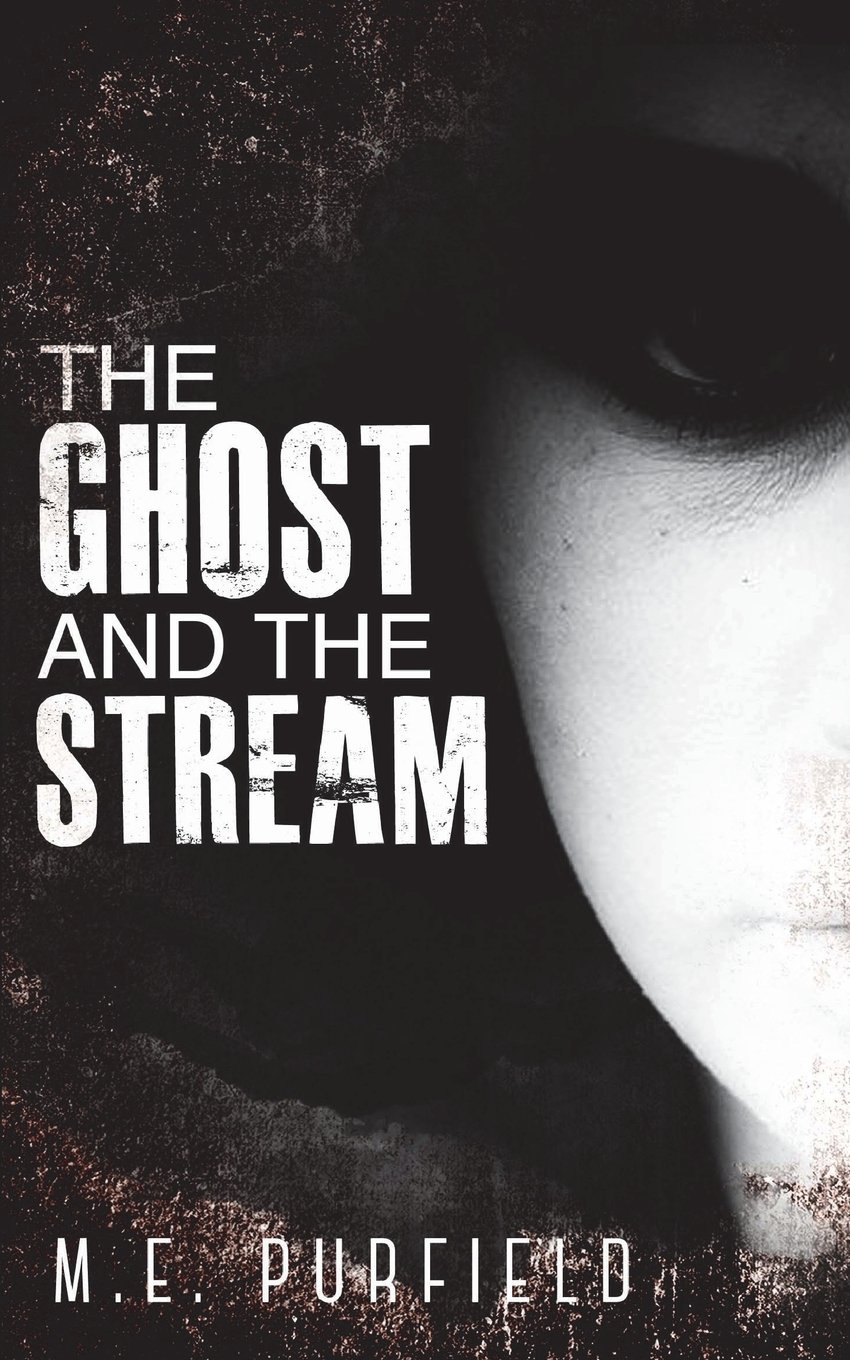 Download The Ghost and the Stream: Miki Radicci Book 9 (Volume 9) ebook