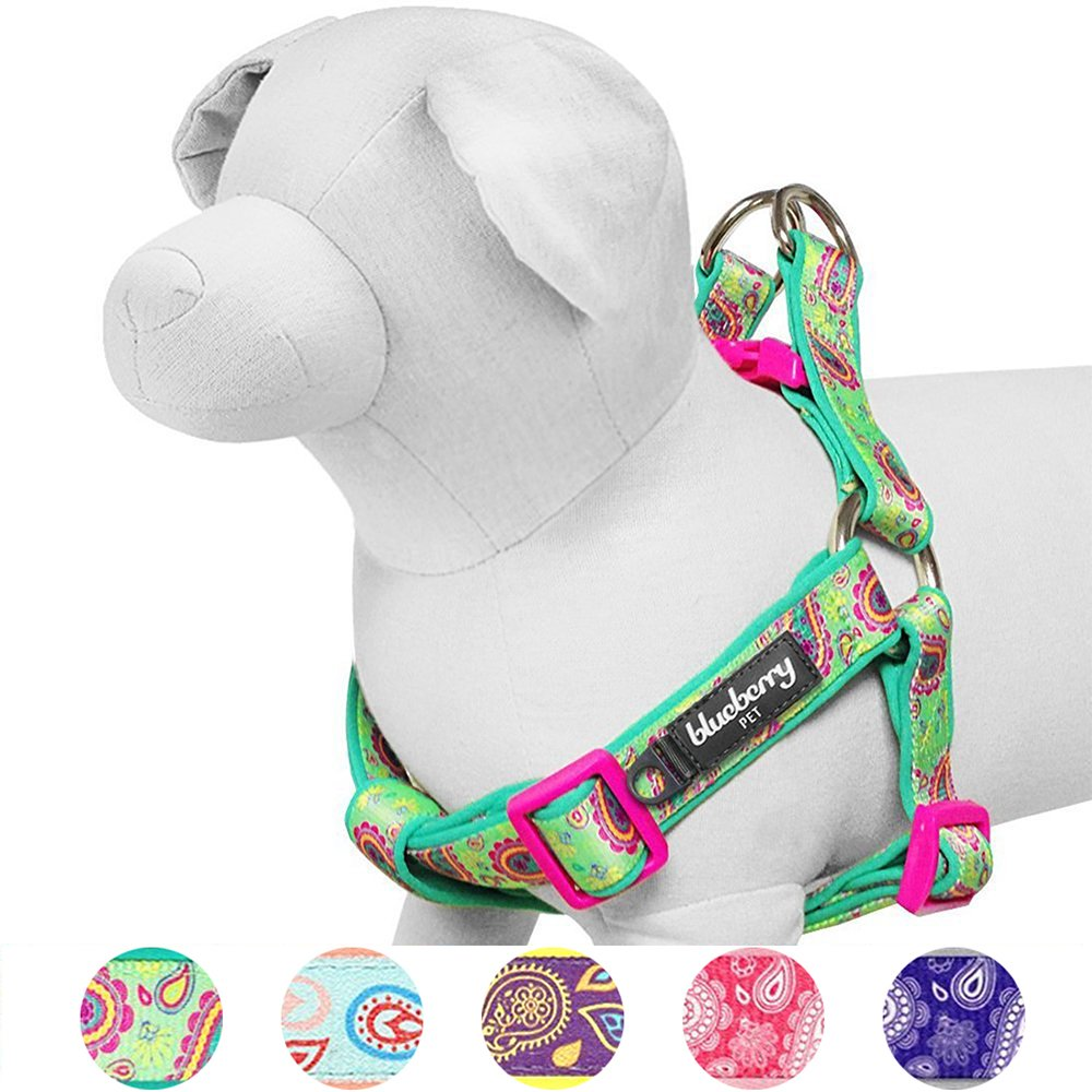 Blueberry Pet 5 Colors Soft & Comfy Step-in Paisley Flower Print Dog Harness, Chest Girth 16.5'' - 21.5'', Emerald Green, Small, Adjustable Harnesses for Dogs