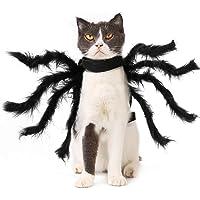 PEDOMUS Hunddräkt Halloween kostym hund katt små stora spindelkostymer