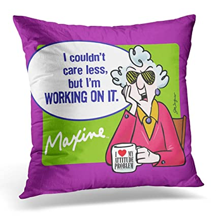 Amazon VANMI Throw Pillow Cover Hallmark I Couldn Care Less Gorgeous Decorative Pillows For Less
