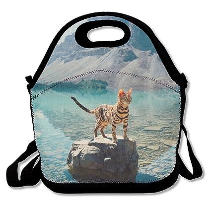 Bolsa de almuerzo reutilizable con aislamiento, bolsa de ...