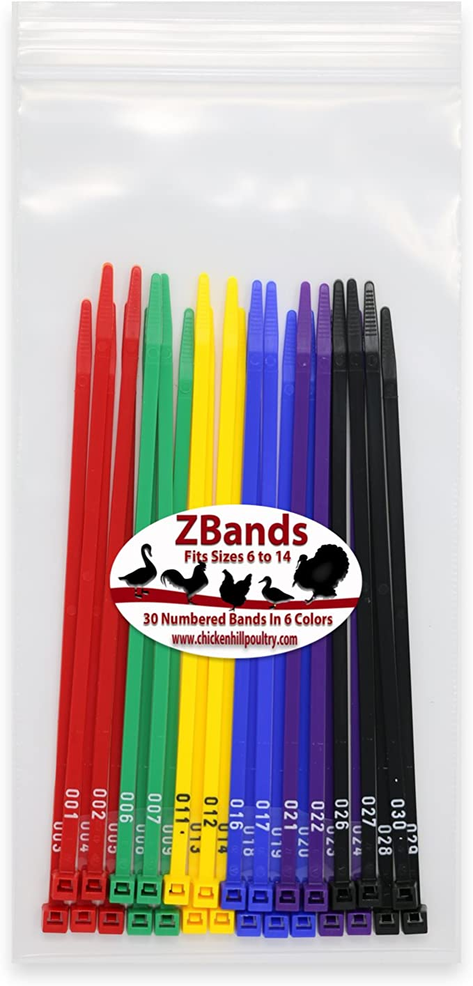 40 Self-Locking Poultry Leg Bands for All Types of Poultry /& FINE POINT SHARPIE