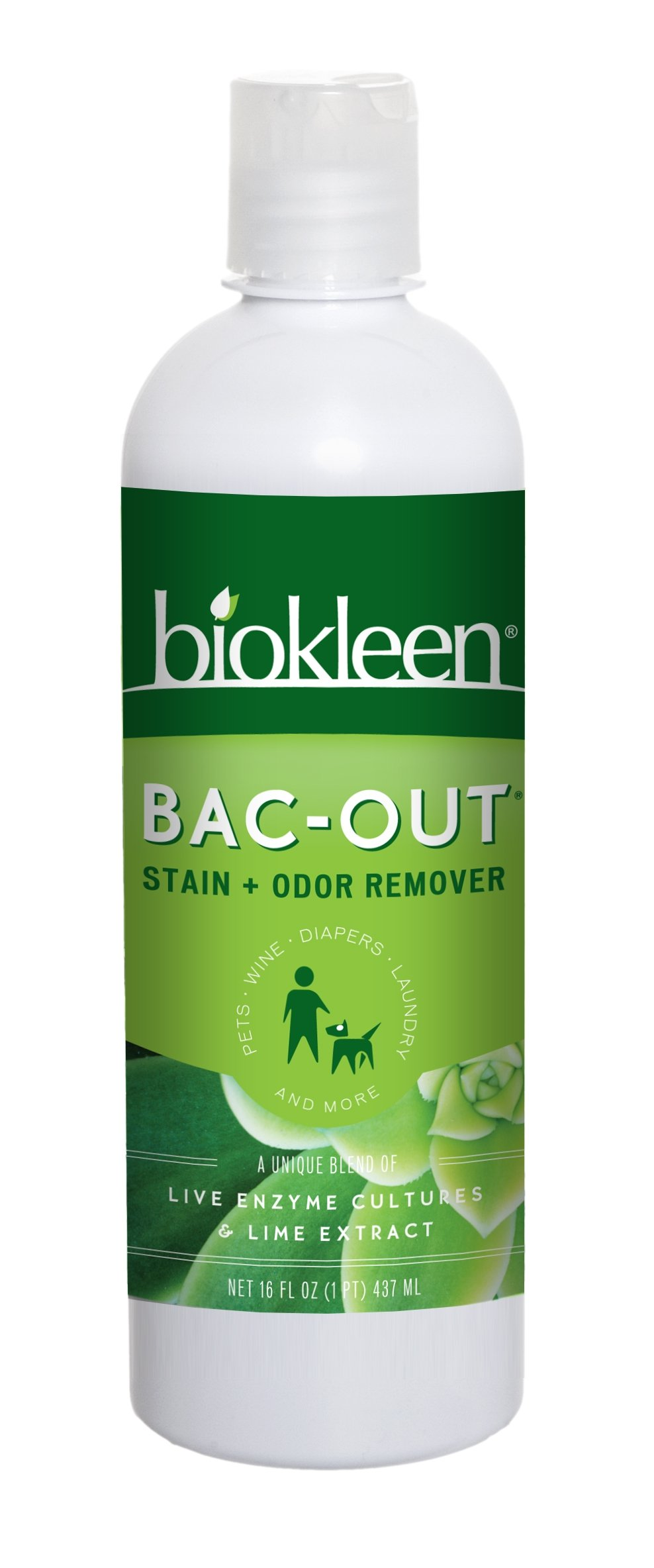 Biokleen Bac-Out Stain+Odor Remover, Destroys Stains & Odors Safely, for Pet Stains, Laundry, Diapers, Wine, Carpets, & More, Eco-Friendly, Non-Toxic, Plant-Based, 16 Ounces (Pack of 12)