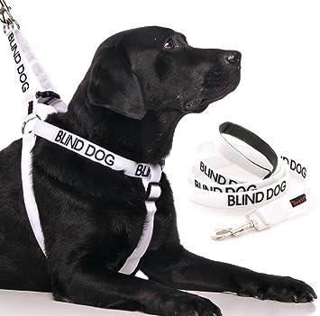 Perro ciego (perro tiene limitado/no tiene vista) arnés de perro ...