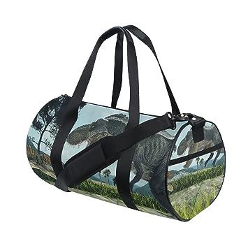 jstel 3d rendering dinosaurios bolsa de deporte gimnasio ...