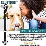BLUETREE Dog Doorbells Premium Quality Training