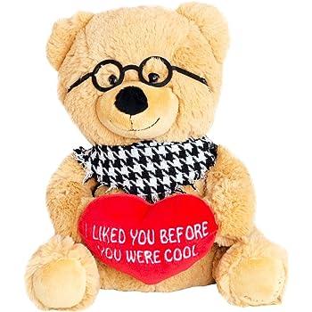 Funny teddy bear you suck