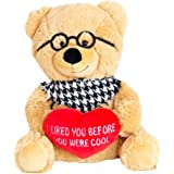 Hollabears Hipster Teddy Bear Plush   Funny And Cute Gift Idea For The  Girlfriend, Boyfriend