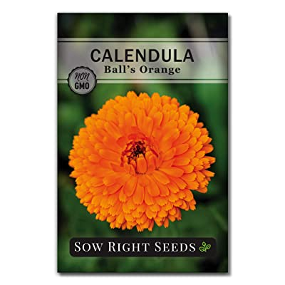 Sow Right Seeds - Ball's Orange Calendula Seeds for Planting, Beautiful to Plant in Your Flower Garden; Non-GMO Heirloom Seed; Wonderful Gardening Gift (1 Packet) : Garden & Outdoor