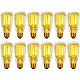 Globe Electric 40W Vintage Edison S60 Squirrel Cage Incandescent Filament Light Bulb, 12-Pack, E26 Base, 313242