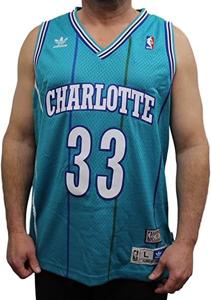 Alonzo Mourning Charlotte Hornets