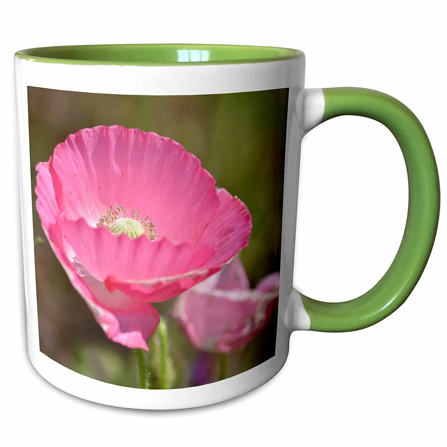 Amazon 3drose Ps Flowers Spring Day Pink Poppy Flower