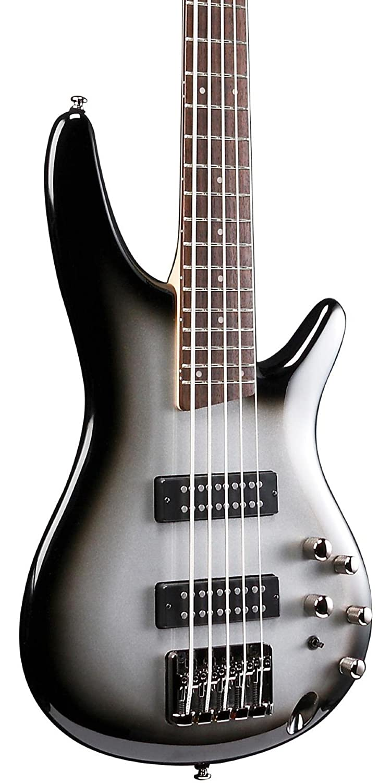 Amazon.com: Ibanez SR305E MSS 5 String Electric Bass Metallic Silver ...