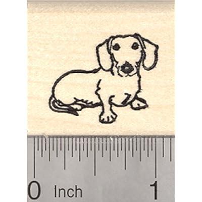 Dachshund Rubber Stamp, Dog, Small: Fine Art