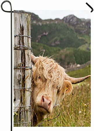New Embroidered Scots Scottish Highland Cow Cattle Kitchen Dining Table Cloth