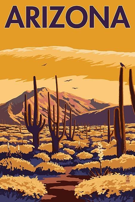 Amazon.com: Arizona Desert Scene with Cactus (9x12 Art Print, Wall ...