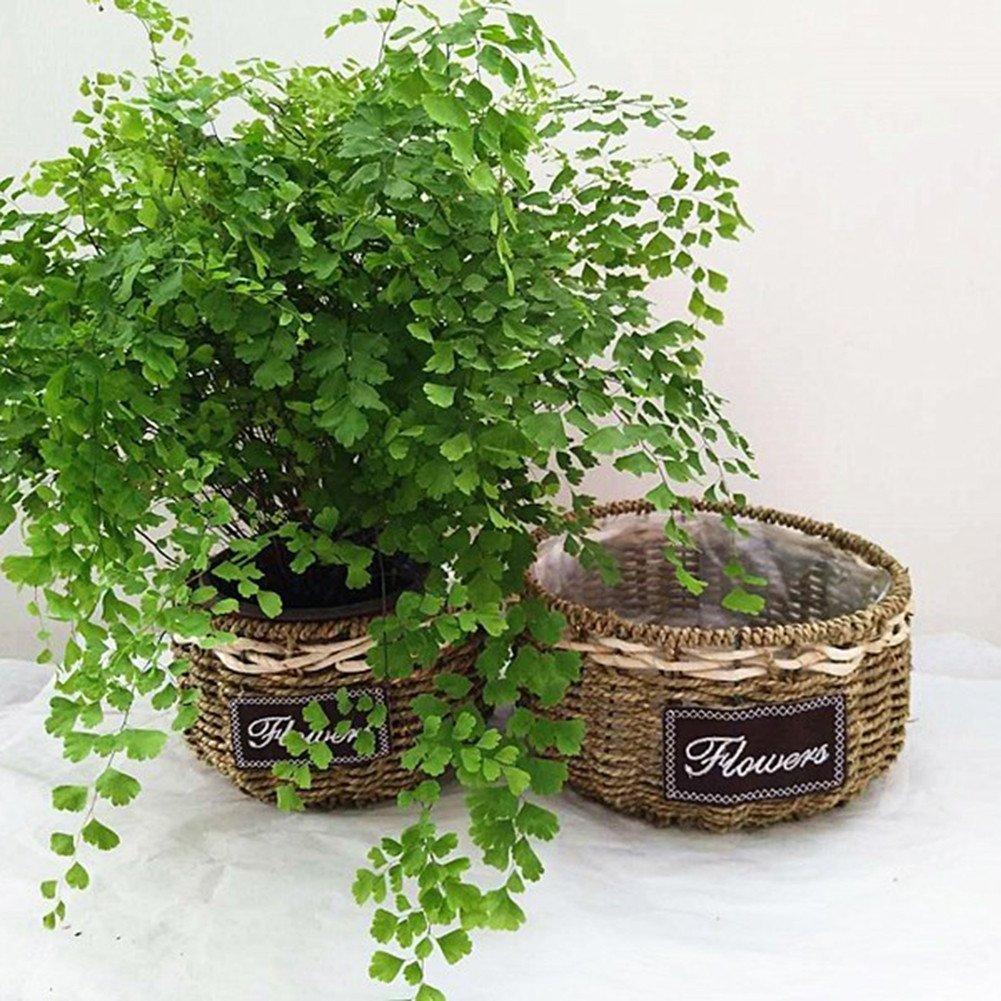 YOSPOSS Cesta de mimbre natural tejida a mano, cestas de almacenamiento, adornos de escritorio creativos decorativos macetas de flores, florero de pecera, ...