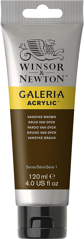 Winsor U0026 Newton 120ml Galeria Acrylic Paint   Vandyke Brown: Amazon.co.uk:  Kitchen U0026 Home