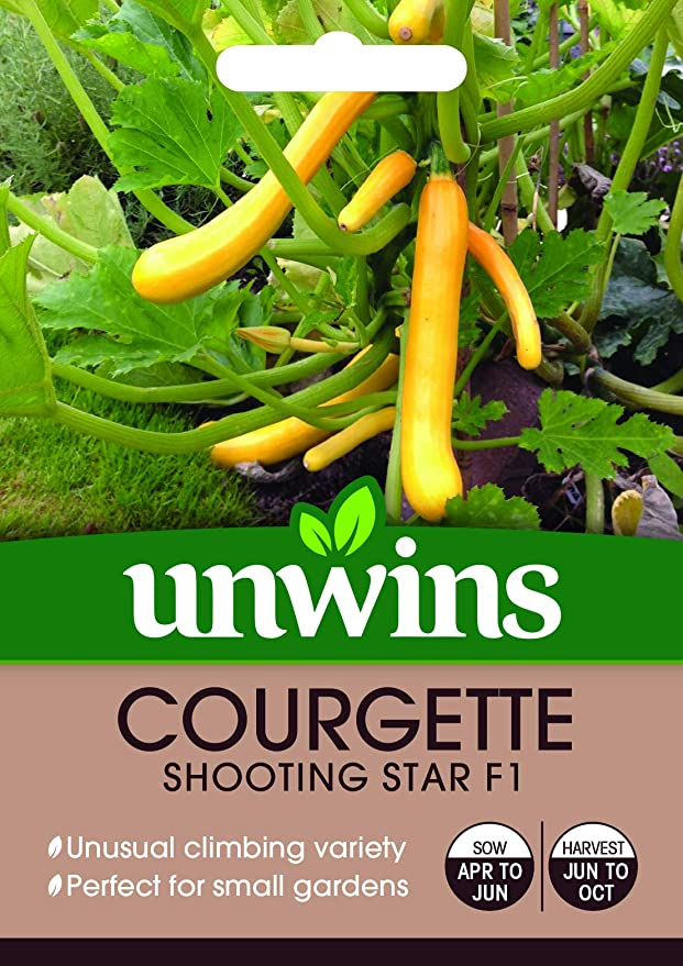 KINGS YELLOW COURGETTE SHOOTING STAR F1 10 SEED SEALED PACKET
