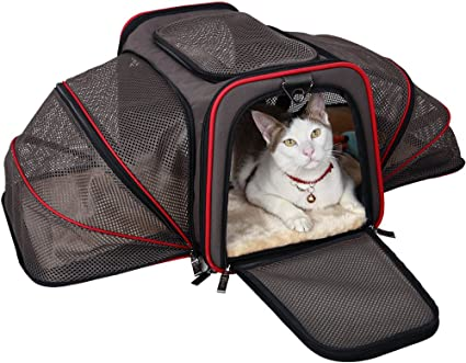 Image result for cat carrier