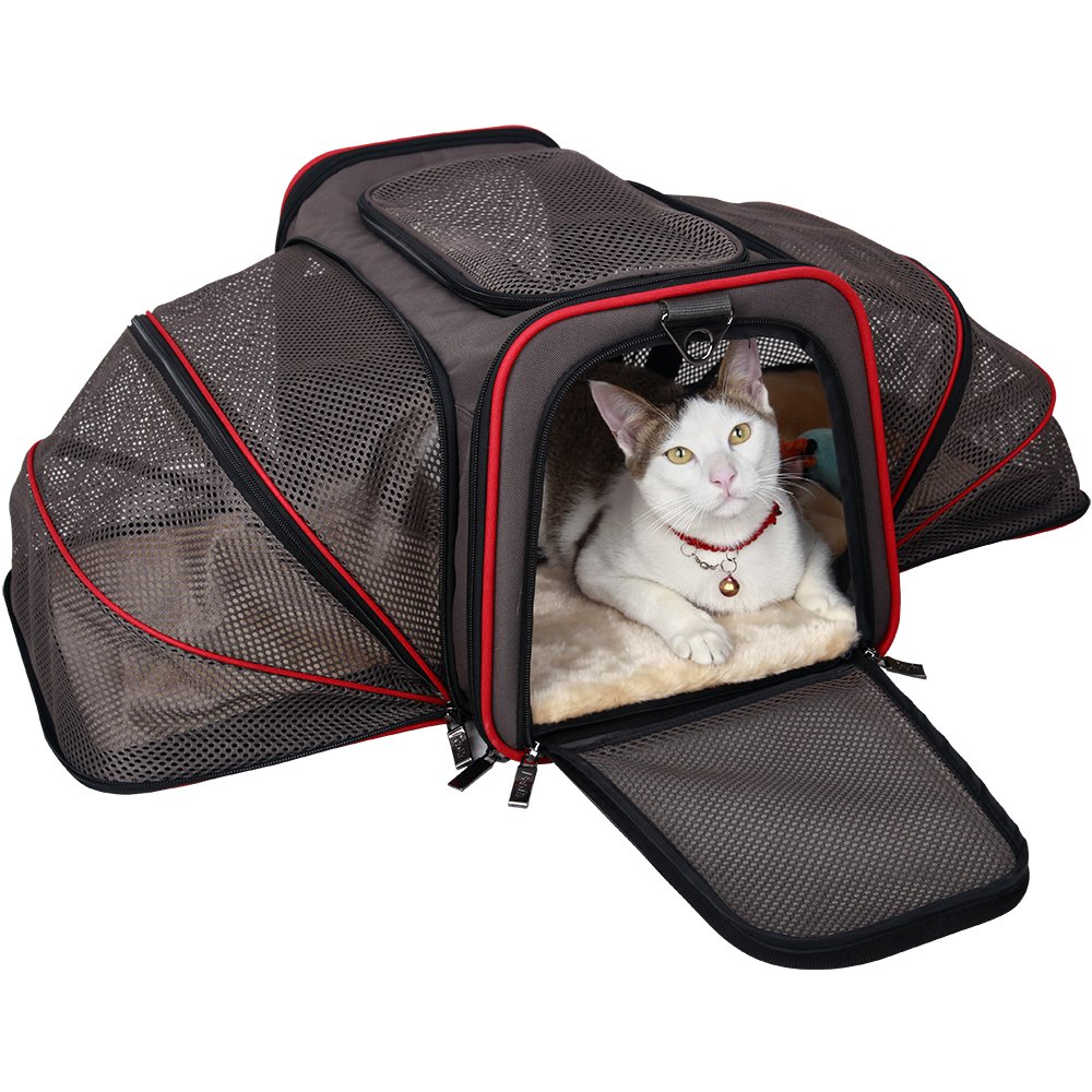 Petsfit Cat Carrier Expandable Dog Carrier for Medium Dogs, Expandable Pet Carrier Most Airline Approved, Two Side Expasion, Easy Carry on Luggage with Fleece Mat Grey19 x 12'' x 12''