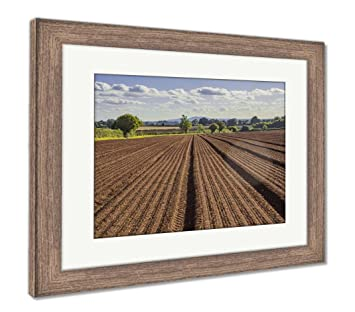 Amazon Com Ashley Framed Prints Field Agriculrural Landscape Uk