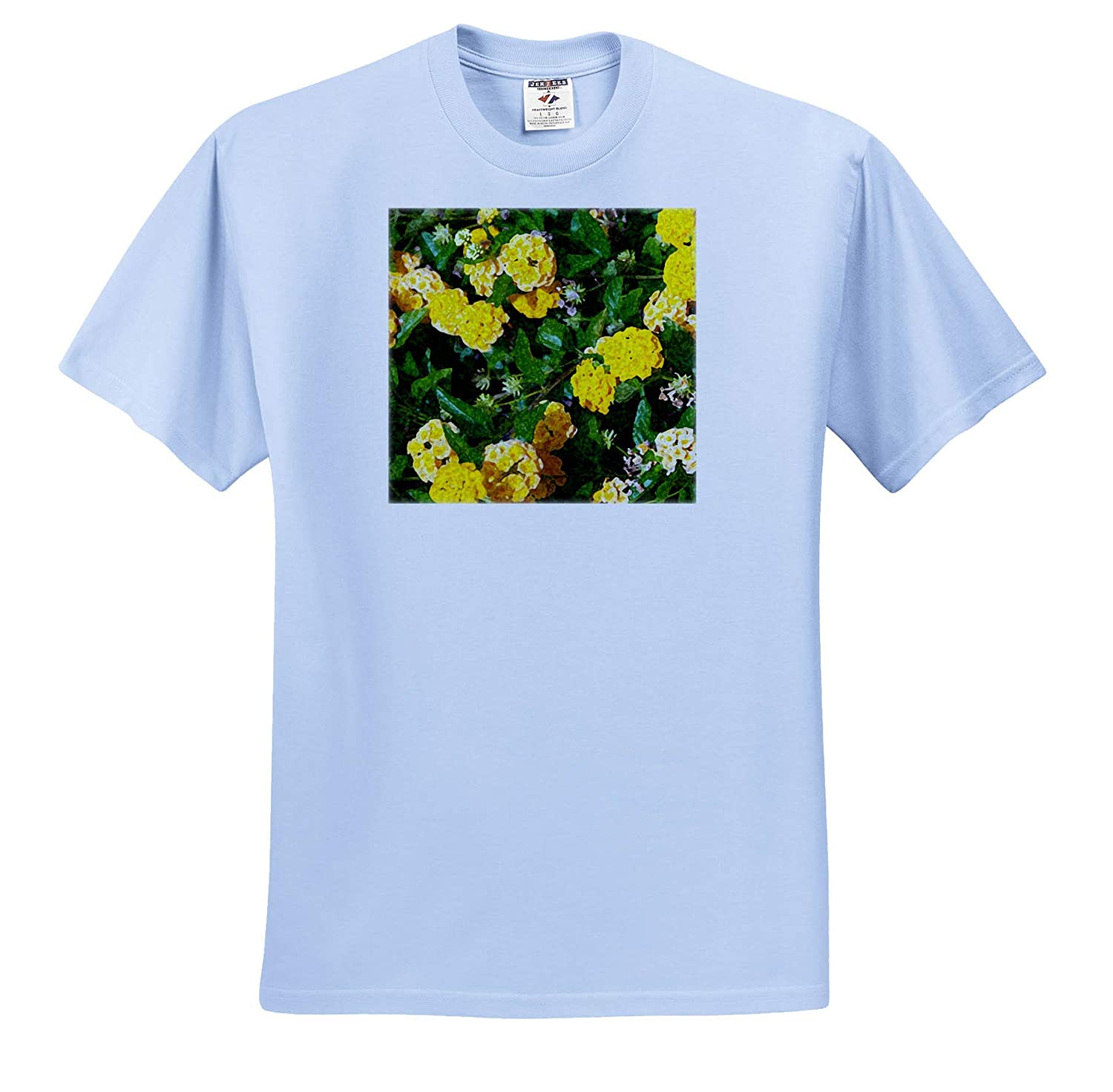 ts/_318858 3dRose Jos Fauxtographee- Flowers Yellow Flowers in a Garden Using Digital Paint daubs Adult T-Shirt XL