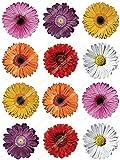 12 x Cakeshop decoración para pasteles comestibles PRECORTADAS de Flores Multicolores