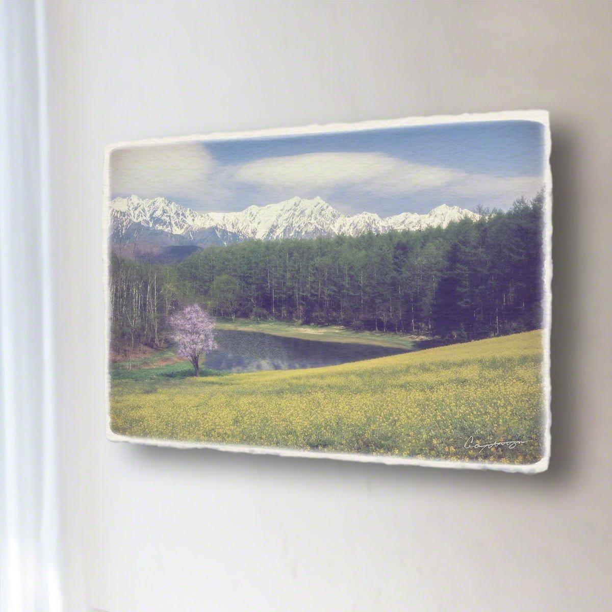 和紙 アートパネル 「菜の花と一本の山桜と残雪の北アルプスを映す池」 (81x54cm) 絵 絵画 壁掛け 壁飾り インテリア アート B078RQB7S6 17.アートパネル(長辺81cm) 88000円|菜の花と一本の山桜と残雪の北アルプスを映す池 菜の花と一本の山桜と残雪の北アルプスを映す池 17.アートパネル(長辺81cm) 88000円